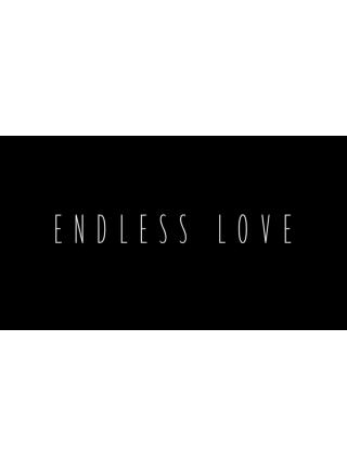 Endless Love (США)